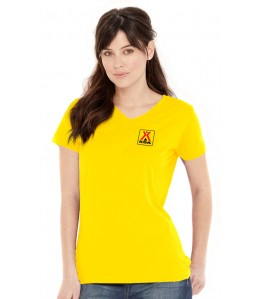 "Ladies' ""Lightweight"" V-neck Tee"